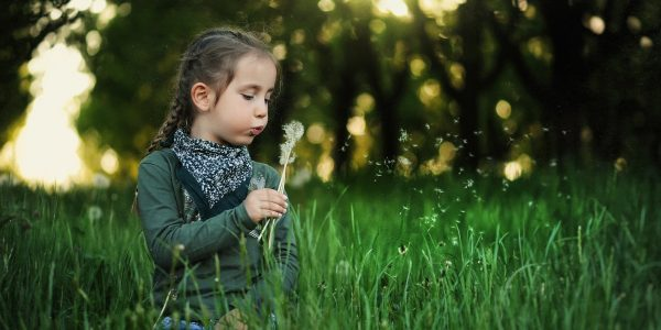 Creative Commons CC0 https://pixabay.com/en/child-dandelion-kids-spring-nature-1347385/